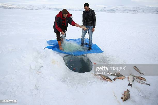 People fish using Eskimo methods breaking the 30 cm thickness ice on Lake Cildir which is the second largest lake of the Eastern Anatolia Region of...