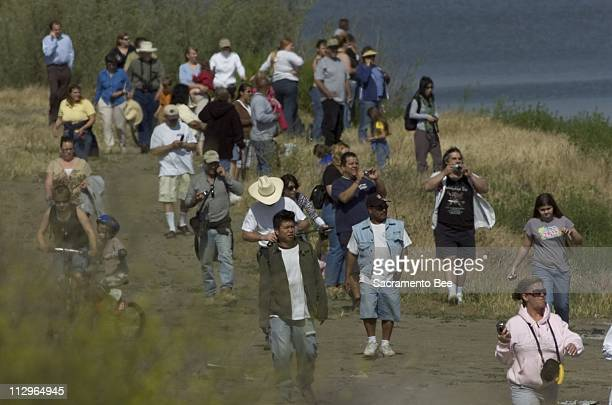 People flock to the levee on the south side of deep water channel in West Sacramento, California to catch a glimpse of the two Humpback whales that...