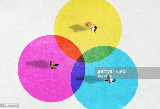 people from above inside colorful circles with social distancing. - abstand halten infektionsvermeidung stock-fotos und bilder
