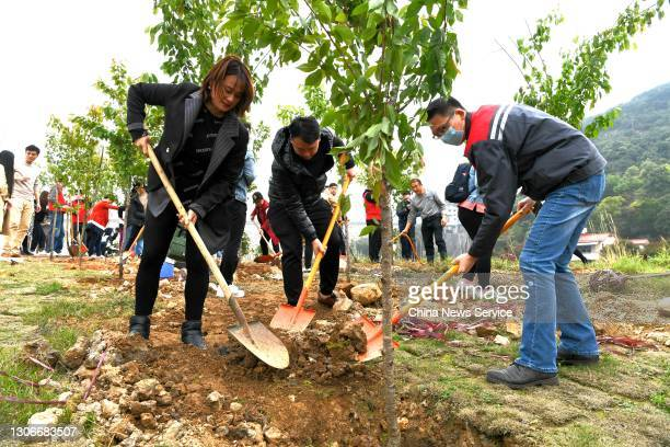 People from the Chinese mainland and Taiwan participate in a voluntary afforestation campaign on China's 43rd Tree-Planting Day on March 12, 2021 in...