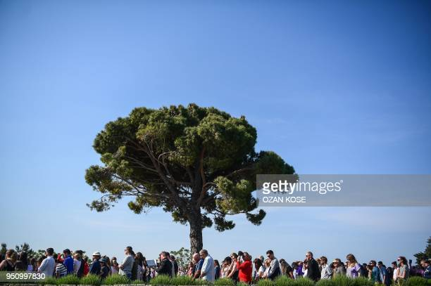 People gather around a pine tree as they attend a ceremony marking the 103rd anniversary of ANZAC Day at Lone Pine Cemetery on the Gallipoli penisula...