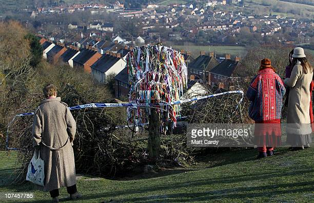 People gather around the vandalised Holy Thorn tree that was cut down overnight on Wearyall Hill on December 9 2010 in Glastonbury England Police...