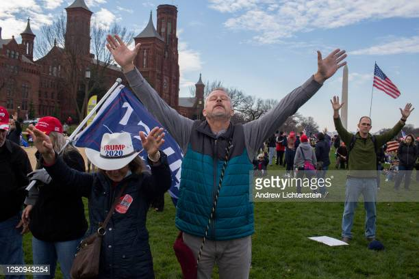 People gather in support of President Donald Trump during a Stop the Steal rally on December 12, 2020 on the National Mall in Washington, D.C....
