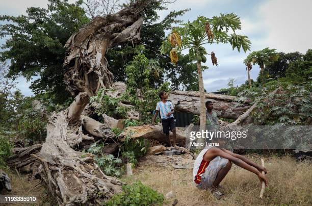 People gather near a banyan tree toppled by Cyclone Pam in 2015 on December 05, 2019 in Tanna, Vanuatu. 25 percent of Vanuatu's 276,000 citizens lost...