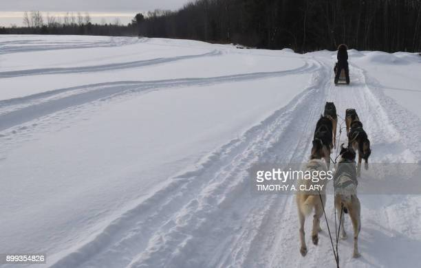 People go through the Lanoraie forest on dogsleds December 28 2017 in Lanoraie Quebec A bitter Arctic chill settled across Canada and much of the...