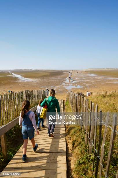 people going for enjoys on the beautyful wells next the sea norfolk beach, holkham, uk - 英国ノーフォーク ストックフォトと画像