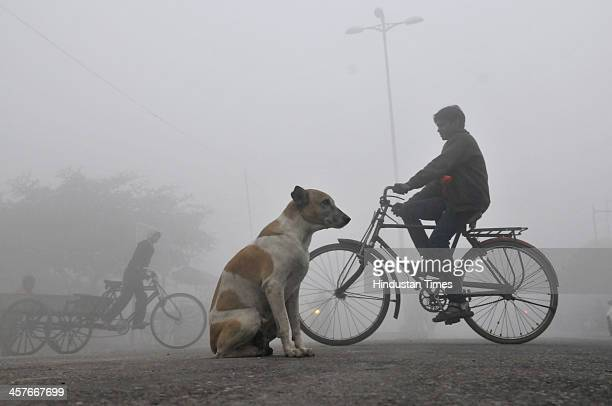 People going to their work place in the foggy and cold morning at Mayur Vihar on December 18 2013 in New Delhi India Poor visibility led to...