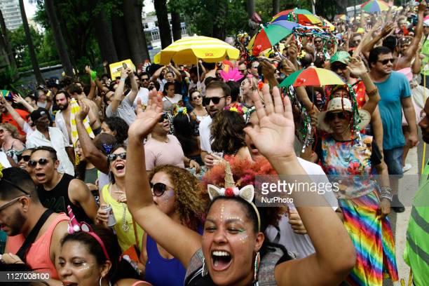 People have fun in the Carnival Blocks Frevo de Mulher and Bicho Maluco Beleza in the Ibirapuera Park in the city of Sao Paulo February 23 2019