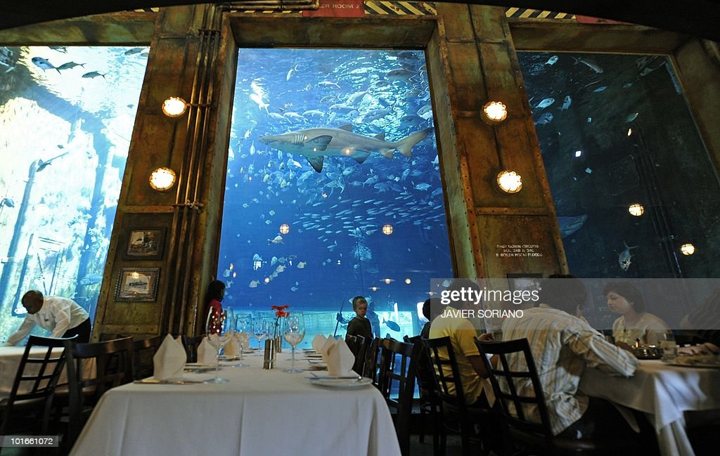 People have lunch next to the window of a large aquarium with fish and sharks in a former cargo ship that is now 'Hold Cargo' restaurant in Bells Beach, Durban on June 6, 2010 .
