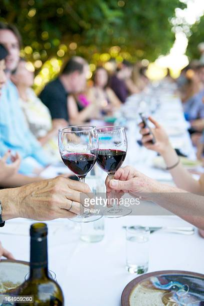 People having a toast at a dinner party outside