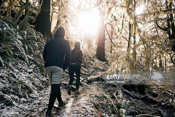People hiking in forest at sunrise
