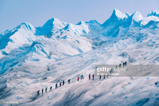 people hiking on the perito moreno glacier, argentina - los glaciares national park stock pictures, royalty-free photos & images