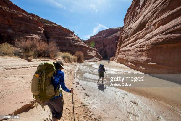 3 people hiking through landscape of deep dramatic red rock desert slot canyon along river.