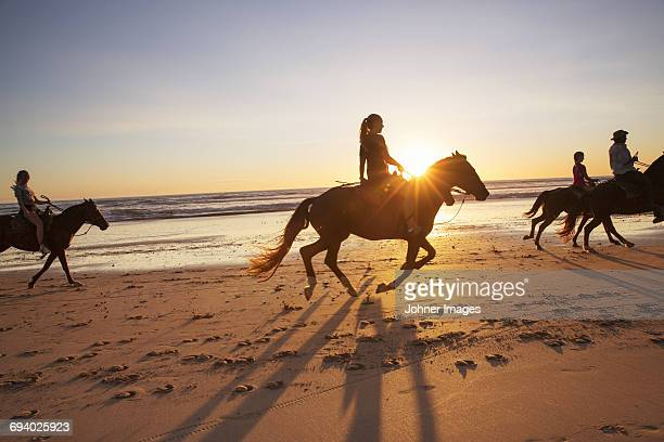 People horseback riding on beach at sunset