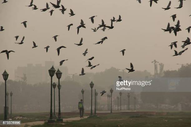 People in Delhi India during an heavy smog day on November 12 2017