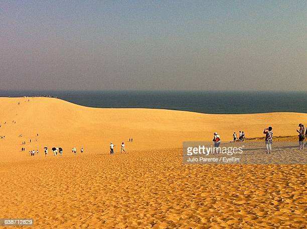 people in desert against sea and sky on sunny day - tottori prefecture stock photos and pictures