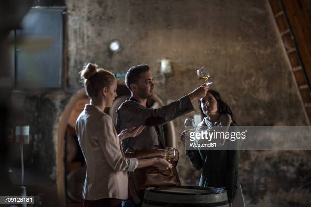 people in distillery tasing whiskey - whisky stock photos and pictures