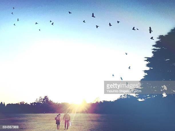 People In Field In Sunlight With Birds Fluting Above