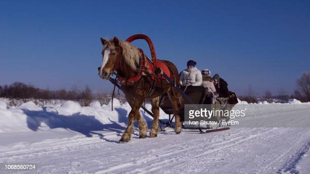 People In Horse Cart On Snow