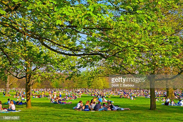 people in hyde park. summer - hyde park london stock pictures, royalty-free photos & images