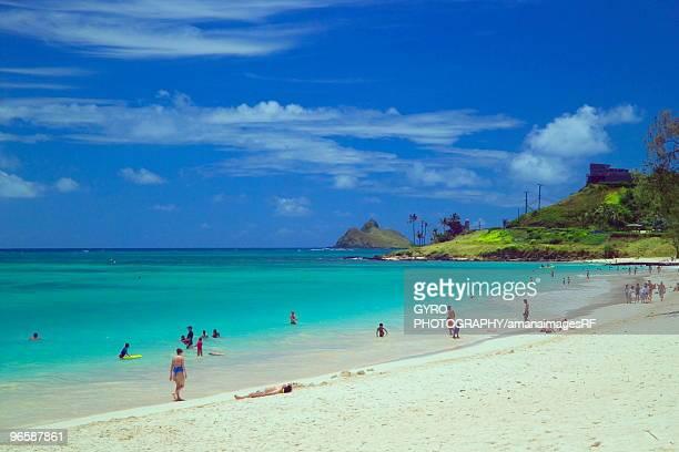 people in kailua beach, oahu, hawaii, usa - kailua beach stock photos and pictures