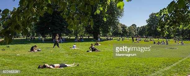 people in kensington gardens - sunbathing stock pictures, royalty-free photos & images