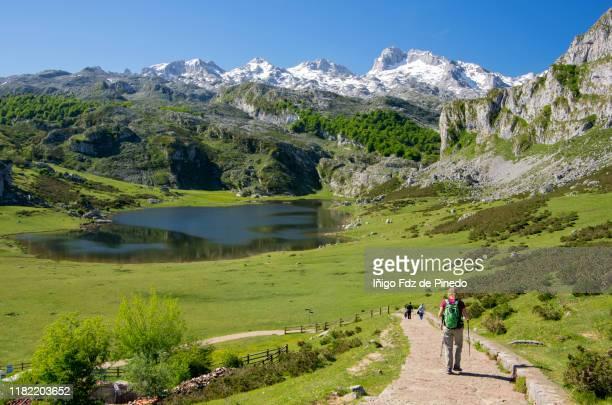 people in lakes of covadonga, cangas de onís, asturias, spain. - principado de asturias fotografías e imágenes de stock