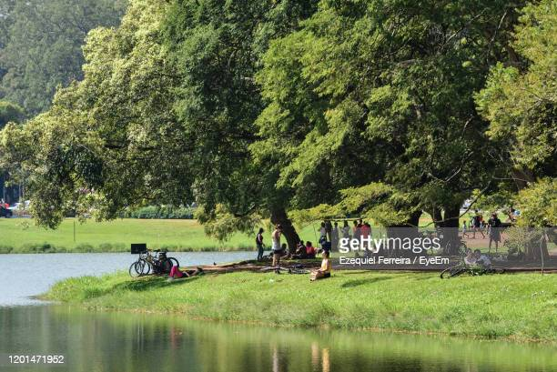 people in park by lake - ibirapuera park stock pictures, royalty-free photos & images