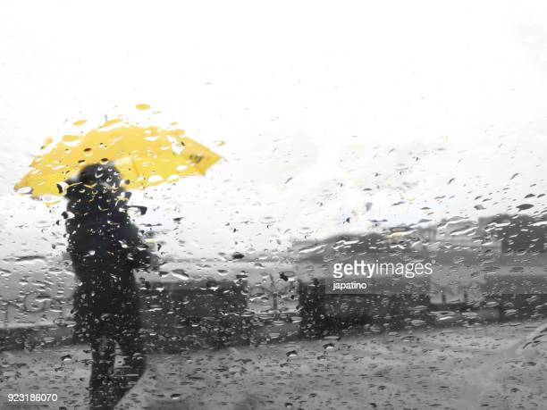 people in the rain - torrential rain stock pictures, royalty-free photos & images