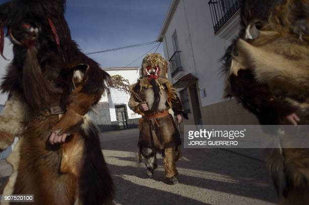 TOPSHOT People in traditional costumes take part in the traditional 'Las Carantonas' festival in Acehuche near Caceres in the southwestern...