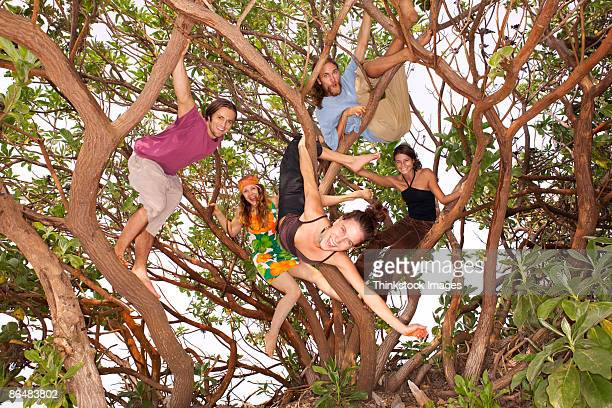 People in tree