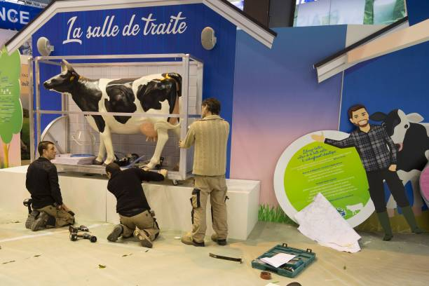 People install a \'milking parlour\' (salle de traite) stand on ...