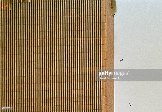 People jump and fall to their deaths from the North tower of the World Trade Center after it was hit by a hijacked airplane and engulfed in smoke and...