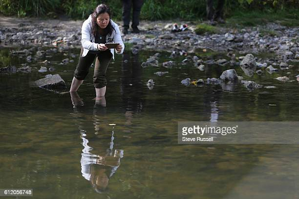 People line the banks looking for salmon. Morningside Park hosts its annual Highland Creek Salmon Festival. An event that brings watershed residents...