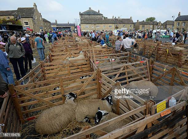 People look around during the sheep fair in Masham September 28 2013 in Masham The fair celebrating its 25th year consists of many events over the...