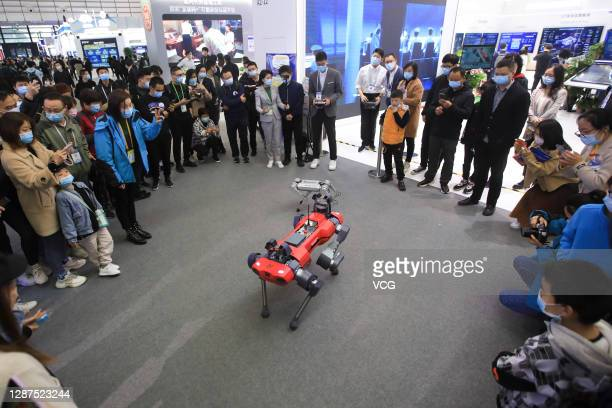People look at a robot dog at the booth of China Electronics Technology Group Corporation during the Light of the Internet Expo as part of the 2020...