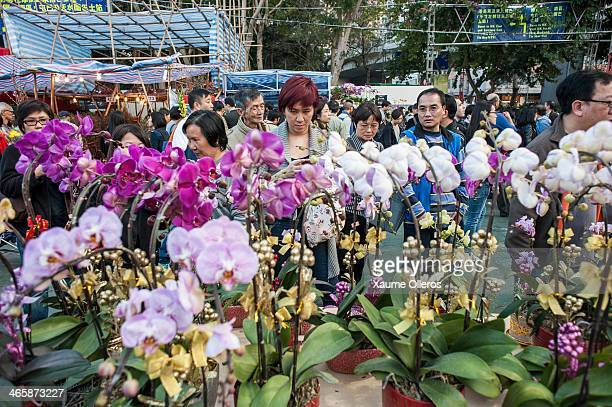 People look at a stand at the Flower Market set up for the Lunar New Year as China prepares for the Year of the Horse at Victoria Park on January 30...