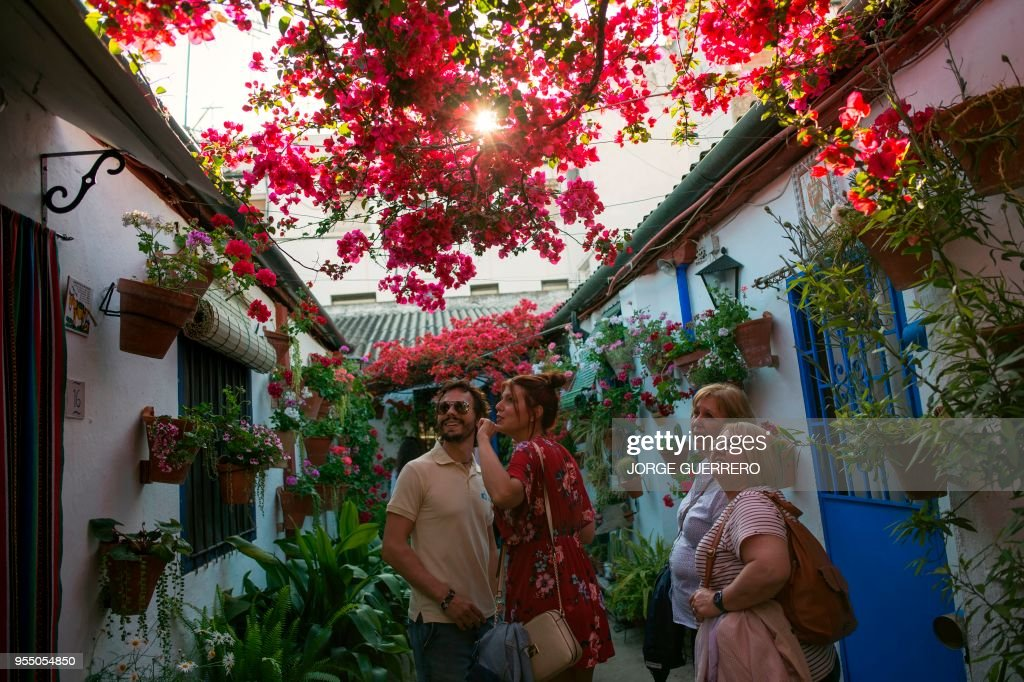People look at flowers during the traditional Patio Festival (Fiesta ...
