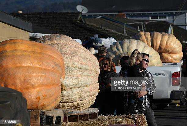 People look at giant pumpkins during the 40th Annual Safeway World Championship Pumpkin Weigh-Off on October 14, 2013 in Half Moon Bay, California....