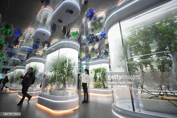 People look at plants bred in space during an interactive technological exhibition on the development of China's manned space program at China...