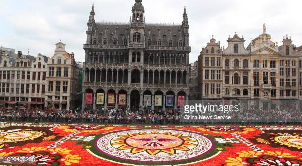 People look at the annual Flower Carpet made up with more than 500000 flowers at Grand Place Square on August 16 2018 in Brussels Belgium Flower...