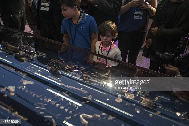 People look at the skeleton of Homo Naledi a newly discovered human ancestor is displayed during the unveiling of the discovery on September 10 2015...