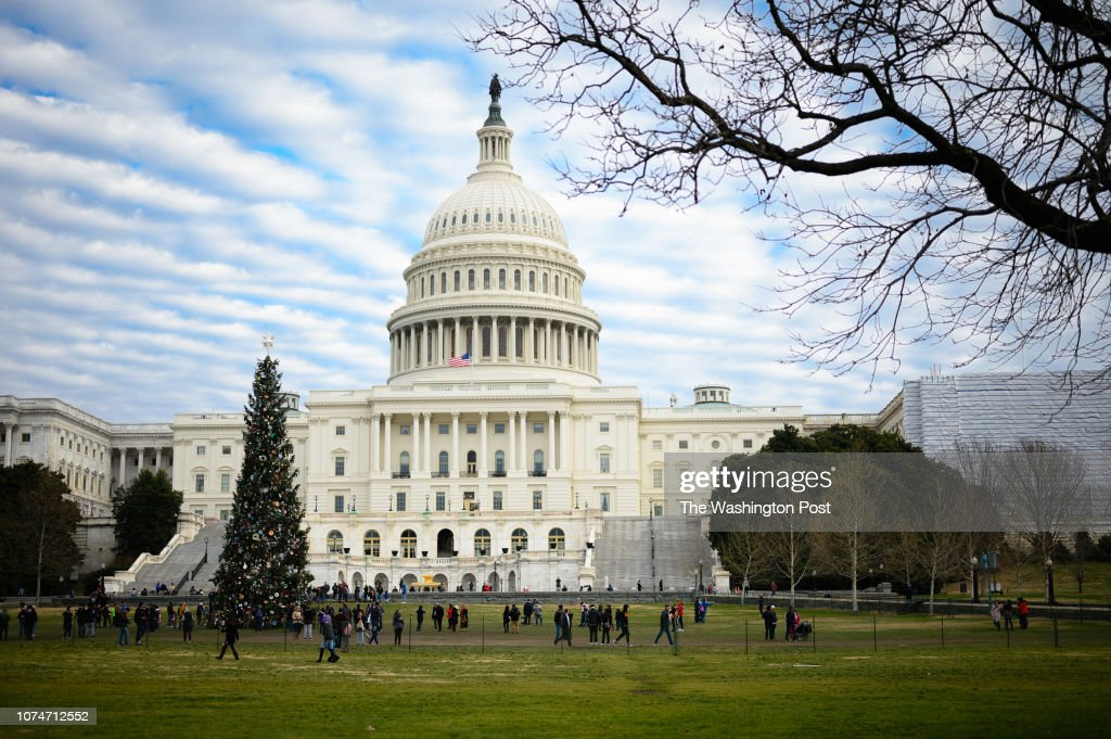 People look at the U.S. Capitol Christmas Tree on Sunday, December 23, 2018. The National Christmas Tree is closed because of the government shutdown. The partial government shutdown may last through the New Year and into January when Democrats take contro : News Photo