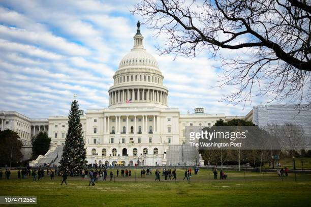 People look at the US Capitol Christmas Tree on Sunday December 23 2018 The National Christmas Tree is closed because of the government shutdown The...