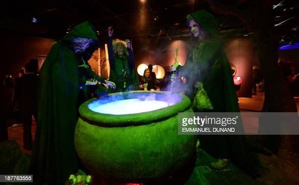 People look at three witches stiring a potion in a cauldron during a preview of The Power of Poison exhibition at the American Museum of Natural...