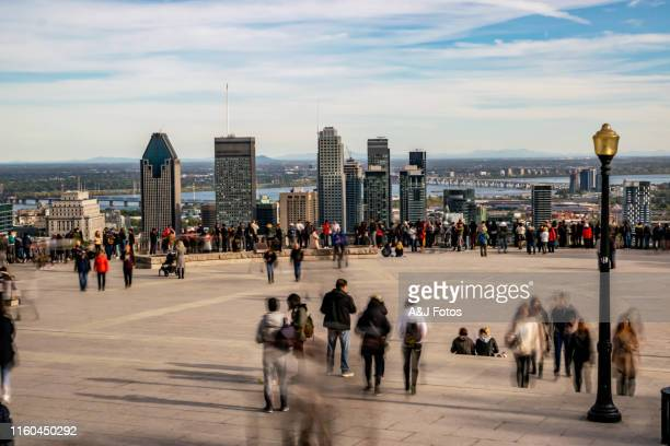 people looking at montreal cityscape in autumn. - montréal stock pictures, royalty-free photos & images