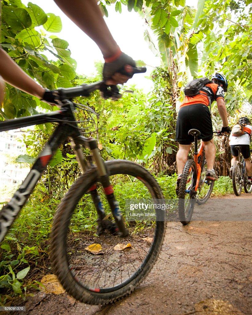 People mountain biking on trail : Stock Photo