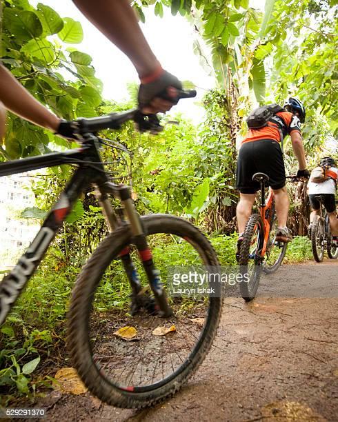 People mountain biking on trail