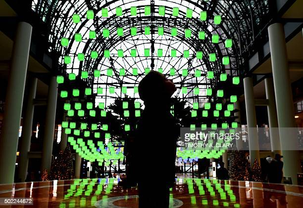 The Winter Garden Atrium Stock Photos and Pictures | Getty Images