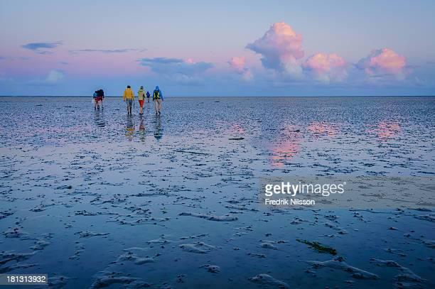 People mud walking at sunset